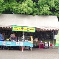 5月25日(木)下関のお弁当