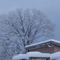 大雪かな?