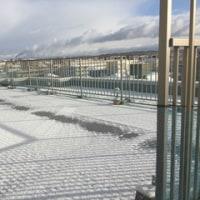 雪の休日(*^-^*)
