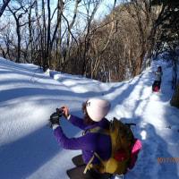 近くの雪山・大川山へ~(H・29・1・25)