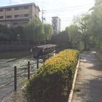 伏見)  大手筋商店街  水郷遊歩  伏水酒造小路