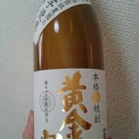 種子島酒造 黄金安納