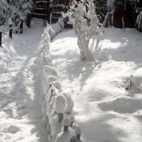 雪の祇王寺