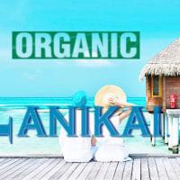 高濃度organicと高濃度炭酸泉と微粒子スチームミスト