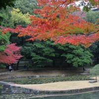 2016/12 曇天の小石川後楽園