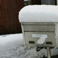 おかあちゃん 雪がハラハラと