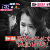 豊田真由子議員の暴言の音声と暴行ニュース
