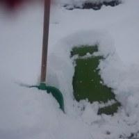 雪の中をすすむ・・・。