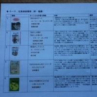 第10回児童文学ピクニック