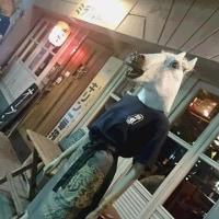 酒場「ミラクル商會」@横浜