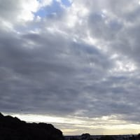 熊本:八百屋のブログ、更新しました。