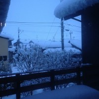 最終日・・・大雪でした