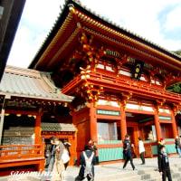 源氏の氏神、鎌倉武士の守護神「鶴岡八幡宮」の美しい社殿と紅葉!!