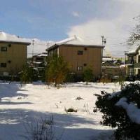 降りやまぬ雪