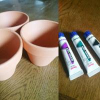 鉢に色を付けてみたら