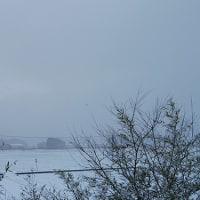 布団とか、コタツとか、冬の楽しみ。