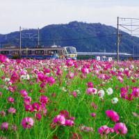 新幹線と近江鉄道