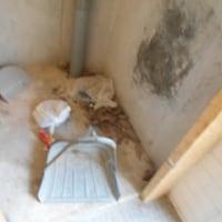 異常が続く子ども公園の男性側トイレ170623