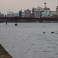 水上練習(H28.12.4)
