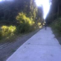 坂、坂、坂サイクリング2016年10月15日