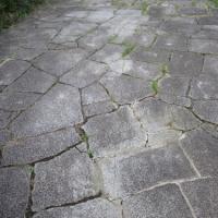 水戸の歩道敷石(3)