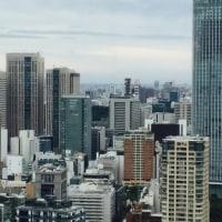 東京タワーへ行ってきました〜♪