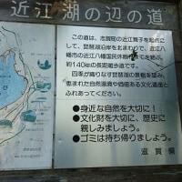 奥琵琶湖を歩く、締めは朝日山