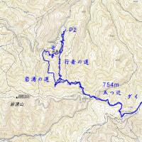 2016/10/20 キッコウハグマ満開の根古峰