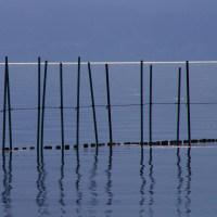 琵琶湖の光  守山市