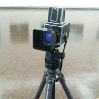 大判・中判カメラの写真展に行ってきました