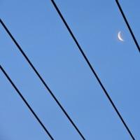 5/22 三日月が東の空に この後、東に消えた