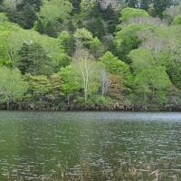 ふれあいイベント「新緑満喫!雪解けの長沼へ」へ行ってきました。
