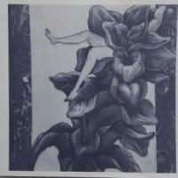 高倉リコさんの銅版画展