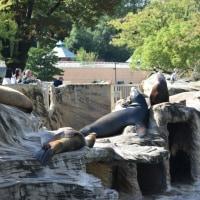 東山動植物園 2。