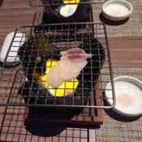 今冬最後のふぐ料理をプラザ淡路島で!