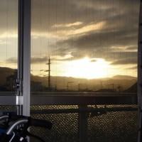 1月31日(火)晴。眩しい太陽です。