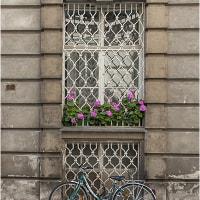 ウイーンの窓