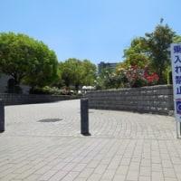 第50回福山ばら祭前日(緑町公園の様子)