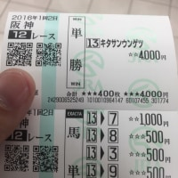 041  重賞回顧&勝負馬回顧