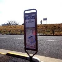バス停が新設