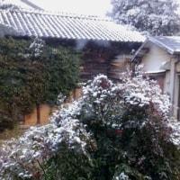 全国的に大雪ですね。