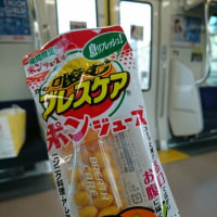 期間限定!「噛むブレスケア ポンジュース味」をやっと発見~!