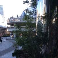 街ナカみどり   みどりに包まれた丸井有楽町店