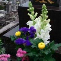 春のお彼岸、一日でお墓をいくつも回りましたぁー。