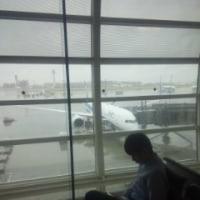 本日のご搭乗機(JA888A)…