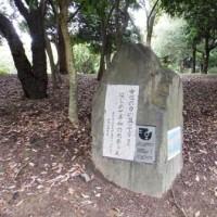 岸和田中央公園のこころの径