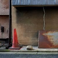 Kyoto fragment