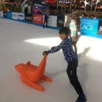 Ice Park & Mall
