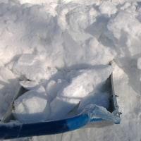 メロン小屋の屋根雪降ろし