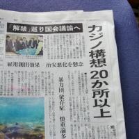 日本を博打国にする気か?